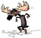 Moose with Moccasins. Royalty Free Stock Image