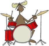 Moose playing drums Stock Photo