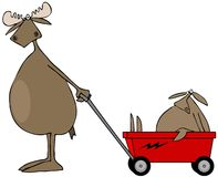 Moose pulling baby in wagon Stock Image