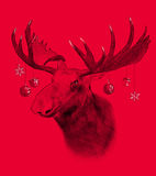 Moose on red background. Illustration in draw, sketch style. Royalty Free Stock Photography