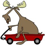Moose in a red wagon Stock Images