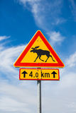 Moose on a road sign. Finland stock photo