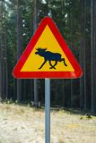 Moose roadsign Stock Images