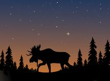 Moose Silhouette. D against an evening twilight sky Royalty Free Stock Photo