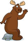 Moose Sitting Royalty Free Stock Images