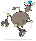 Moose on skates Stock Images