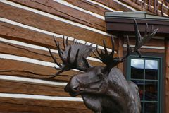 Moose statue by log building on street corner in Ketchum Idaho USA near Sun Valley with mountains reflected in window behind stock image