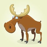 Moose. Vector Illustration of Cartoon Moose Royalty Free Stock Photography
