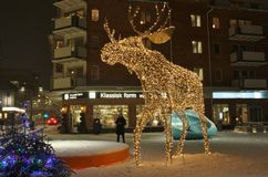 A moose wanders across the square Royalty Free Stock Photography