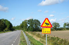 Moose warning roadsign Stock Photography