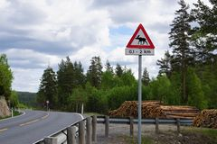 Moose warning sign in Norway. Road sign warning about moose might cross the road on a norwegian country road with forest and timber Royalty Free Stock Image