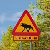 Moose Warning Traffic Sign. Yellow moose warning traffic sign in Sweden Stock Photos