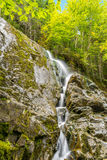 Moosehorn Trail Falls Stock Images
