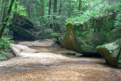 Moosige Felsen auf Nebenfluss stockbild