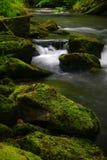 Moosige Felsen und Wasser Stockfoto