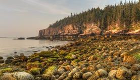 Moosige Flusssteine auf Acadia-Küste Stockfoto