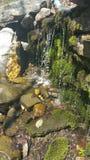 Moosige Wasserfälle auf Felsen lizenzfreie stockbilder