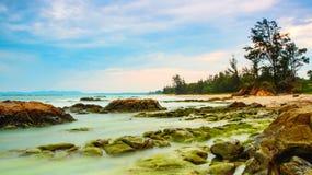 Moosiger Felsen-Borneo-Strand Stockfoto
