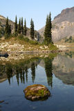 Moosiger Felsen in einem alpinen See Stockfotografie