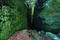 Moosiger Felsenhintergrund Stockbilder