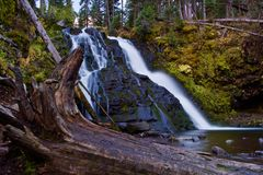 Moosiger Wasserfall Stockfotos