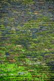 Moosiger Ziegelstein der Wand stockbilder