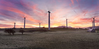 Moota Wind Farm Stock Images