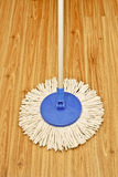 A mop in modern style Stock Photography