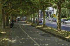 Mopeder som parkeras längs en cirkuleringsgränd som täckas av träd i Dusseld arkivfoto