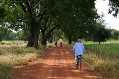 Mopeds and bicycle. Long track with mopeds and bicycle in burkina faso Royalty Free Stock Photo
