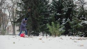 Mops biega po dziewczyny w śnieżnym parku Pies ubierający jako Święty Mikołaj koncepcja nowego roku zdjęcie wideo