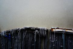 Mops on cement wall Royalty Free Stock Images