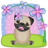 Mopshund med blommor Fotografering för Bildbyråer