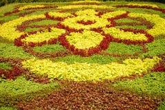 Moquette del fiore Fotografie Stock