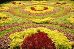 Moquette del fiore Immagine Stock Libera da Diritti