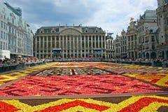 Moquette del fiore a Bruxelles Immagini Stock