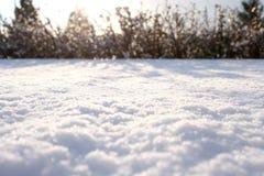 Moquette della neve Immagini Stock Libere da Diritti