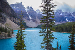 Morän sjö, Alberta royaltyfria foton