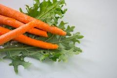 Morötter och grönkål Arkivfoton