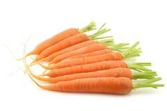 morötter som skördas nytt Royaltyfri Fotografi