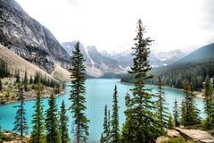 Mor?n sj?Banff nationalpark arkivfoton