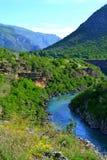 Moraca河,黑山 免版税库存图片
