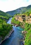 Moraca河,黑山 库存图片