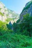 Moraca flod och kanjon Arkivfoto