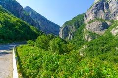 Moraca kanjon Fotografering för Bildbyråer