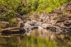 Morada gör solenoid-vattenfallet i chapada gör veadeiros royaltyfri fotografi