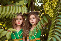 Moradores pequenos da floresta fotografia de stock royalty free
