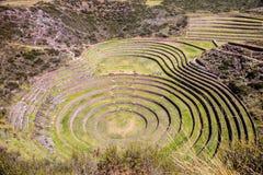 Morai Maras, Περού Στοκ εικόνες με δικαίωμα ελεύθερης χρήσης