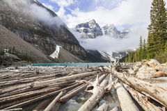 Moraine湖,班夫国家公园,亚伯大,加拿大 库存照片