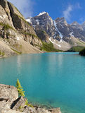 Moraine Lake - Alberta, Canada Royalty Free Stock Photography